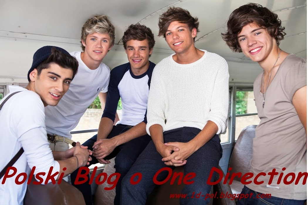 Polski Blog o One Direction