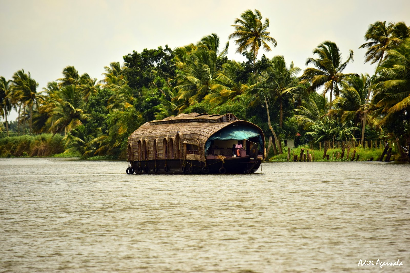 A houseboat sailing on the backwaters of Allepey, Kerala