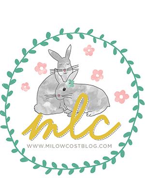 milowcostblog