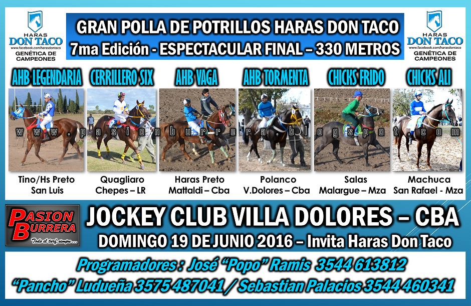 VILLA DOLORES - 19 - POLLA