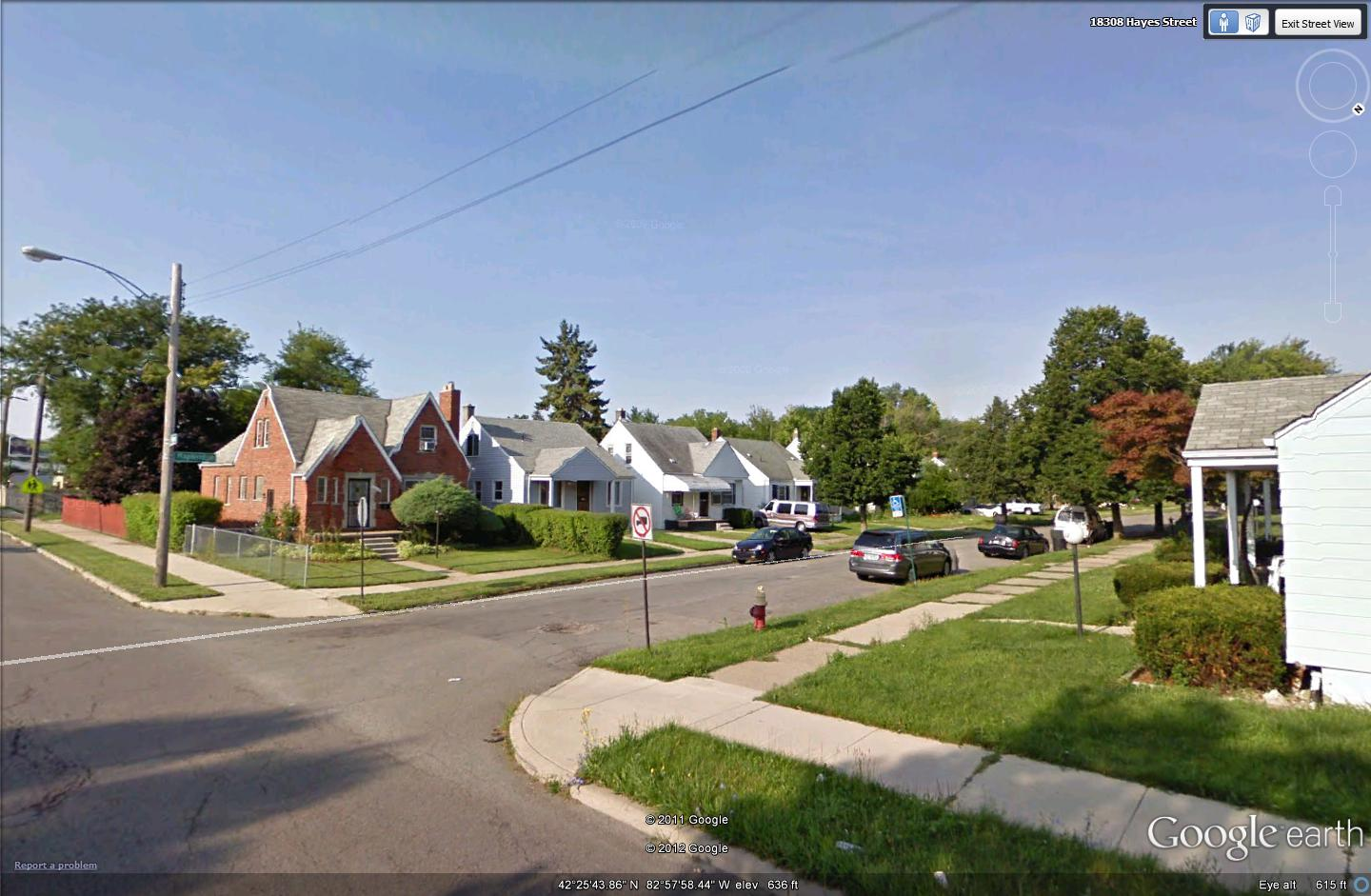 of any major u s city two random images from google earth effectively demonstrate this detroit s residential areas look pretty much like this