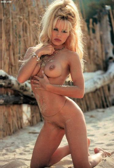 Pamela anderson nude picts topic