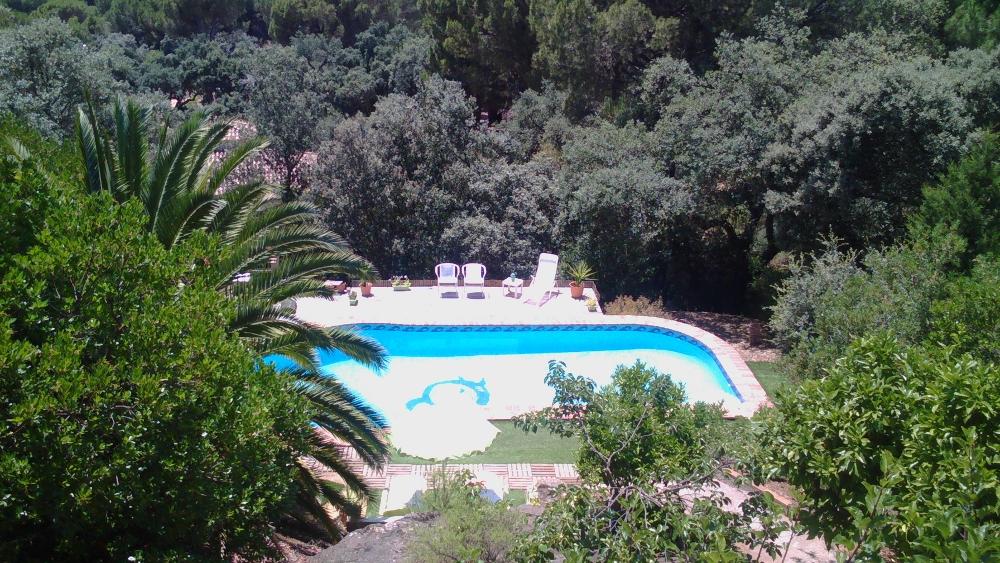 vivasusi blog pool deko wie den pool dekorieren