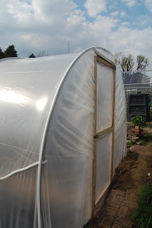 A completed polytunnel is worth a corner of your garden.