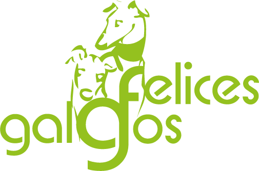 COLLARES GALGOS FELICES