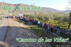 "RUTA SENDERISTA ""CAMINO DE LAS VIÑAS"""