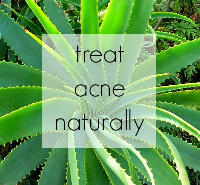 All Natural Acne Solutions | The Twisted Horn