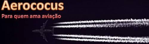 Aerococus