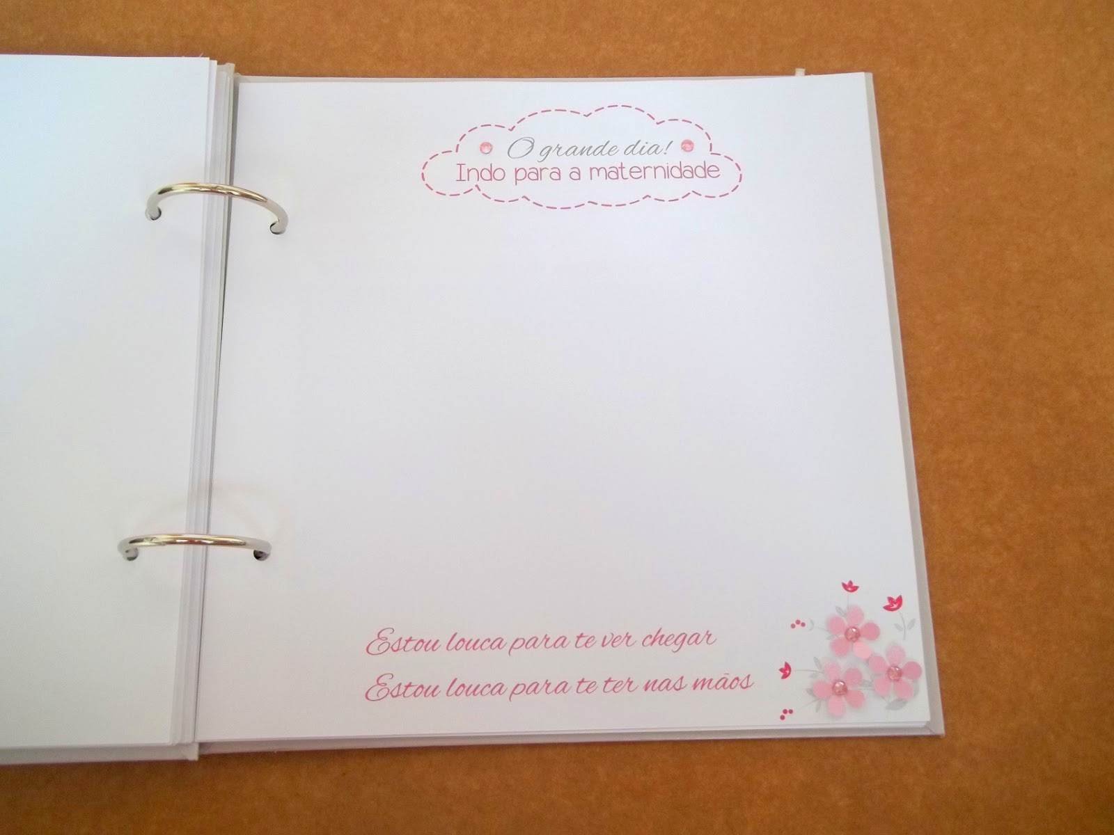 enxoval Sarah, diário gravidez, diário gestante, registro gravidez, scrapbook