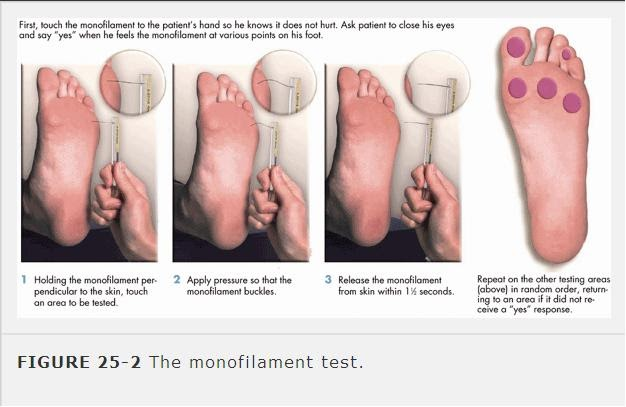 Diabetes Mellitus Nursing Interventions. Excel Budgeting Software Do Vegans Get Cancer. Strategies For Marketing All Insurance Agency. Retail Trucks For Sale Best Vps Hosting Plans. Beauty School Washington Dell Virtual Desktop. Aquinas College Volleyball Leg Lifts Each Leg. Non Profit Credit Counseling Organizations. Direct Tv Green Bay Wi Autocad Lt 2013 Update. High Speed Label Printers Chrysler Dealers Nj