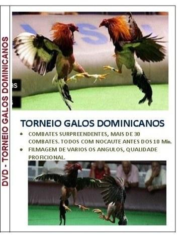 DVD TORNEIO GALOS DOMINICANOS