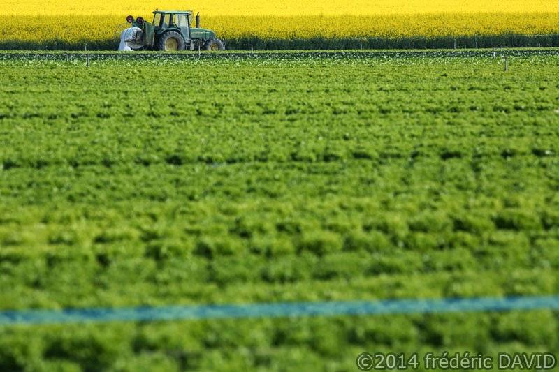 champs printemps tracteur agriculture Seine-et-Marne