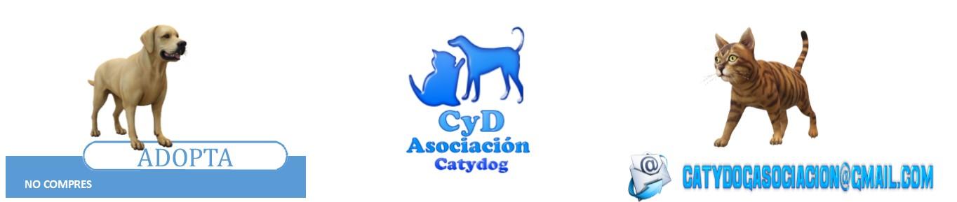 Asociación Catydog