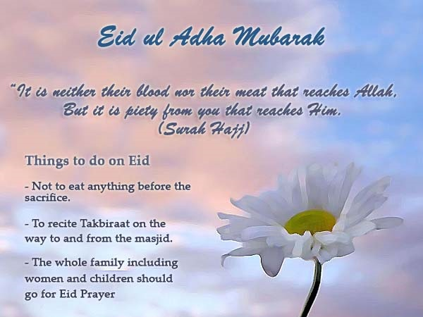Eid ul Adha good wishes