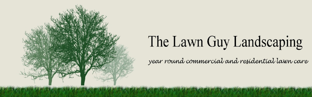 The Lawn Guy Landscaping