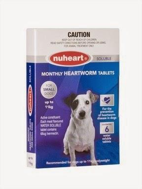 Best Dog Flea Treatment Without Prescription