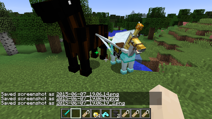 Equipped Unicorn and Destrier