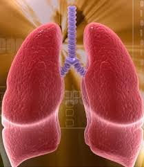 The alpha-1 antitrypsin deficiency: Signs, Symptoms and Treatment for Protect your Lungs