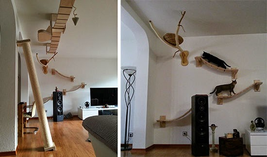 finding not only quality furniture for cats but ones that give a gaming as well as complex jungle gym - Cat Jungle Gym