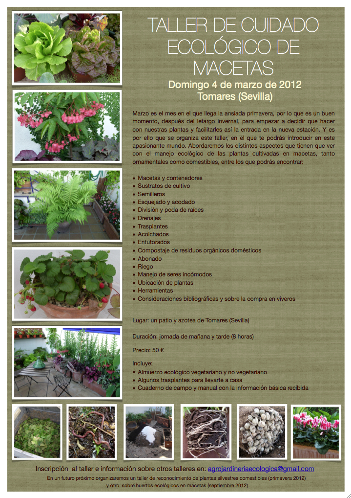 El macetohuerto taller de cuidado ecol gico de macetas for Como iniciar un vivero en casa