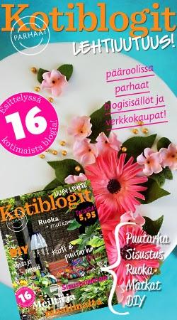 http://www.kotiblogit.fi/