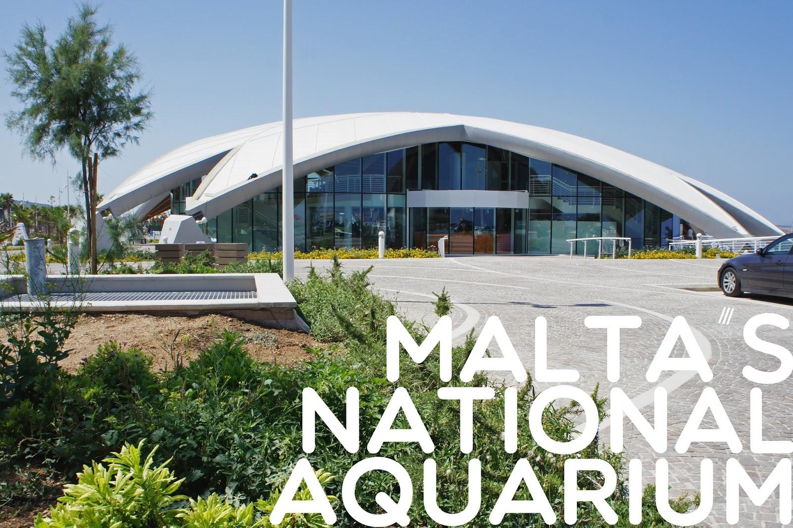 malta+national+aquarium.jpg