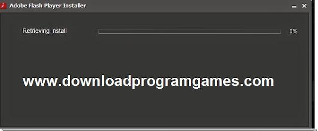 2019 Adobe Flash Player 11.jpg