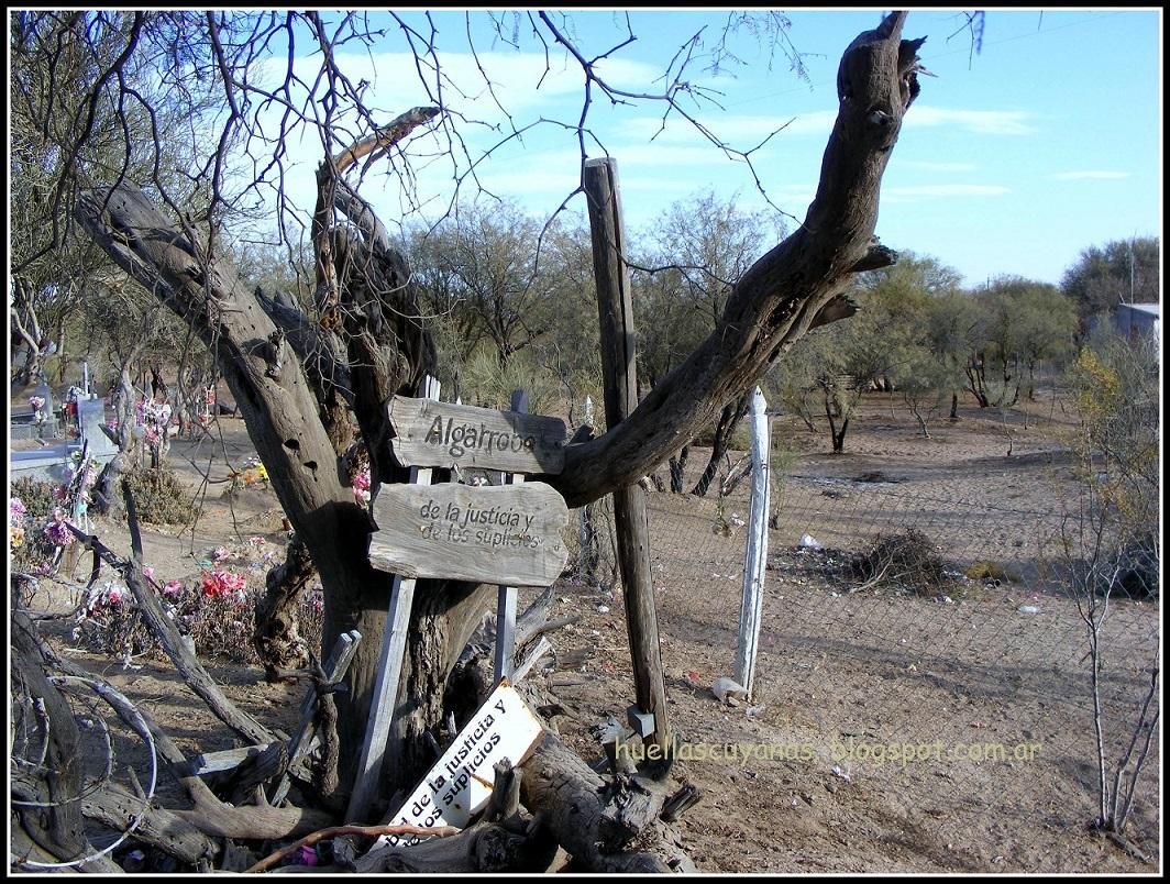 El algarrobo de la justicia y los suplicios leyendas for Aberturas algarrobo rosario