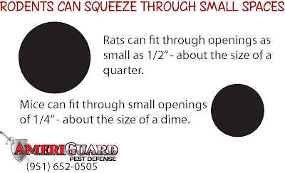 Rodent Opening Diagram