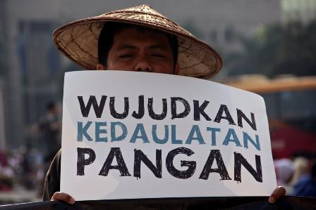 Ekonomi Politik dan Tantangan Otonomi Daerah dalam Menekan Alih Fungsi ...