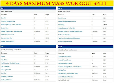 Weekly Gym Workout Schedule: 4 Days Gym Workout