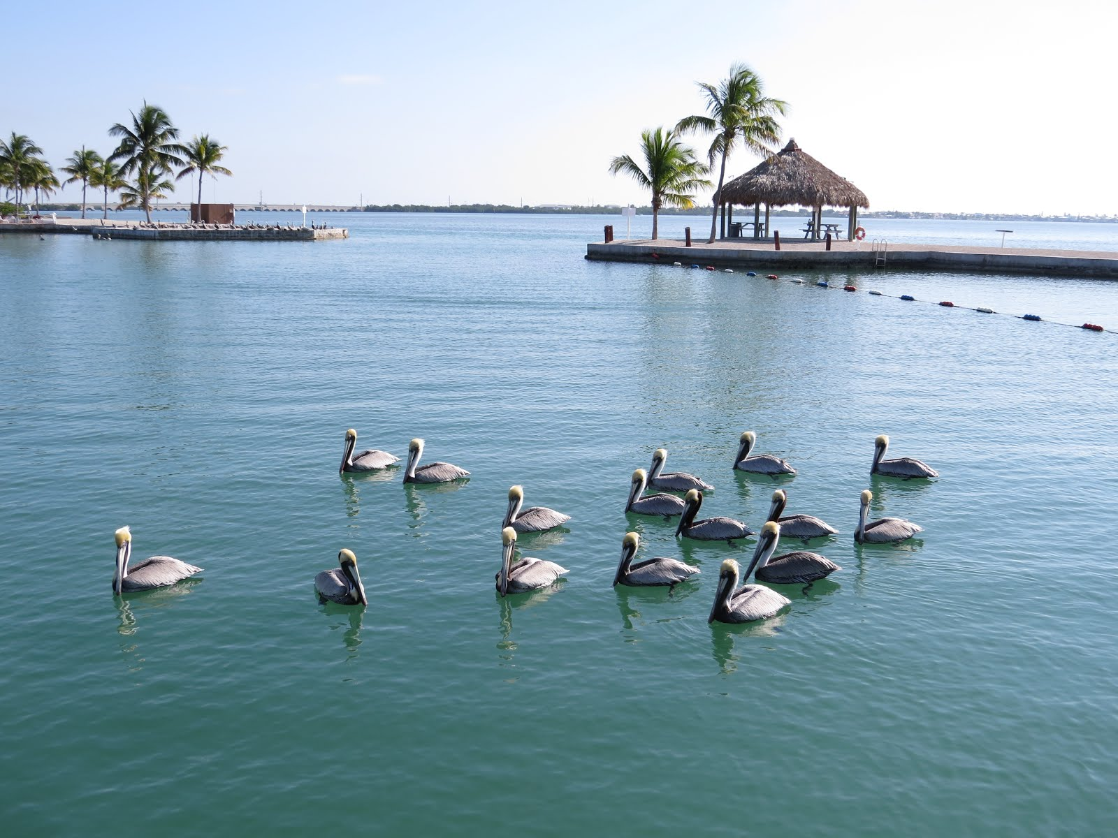 Florida Keys Lot for Rent