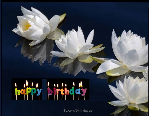 White flowers birthday greeting card - f345 - Birthday Wishes Cards