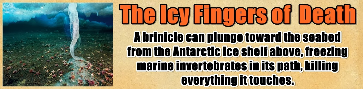 http://www.nerdoutwithme.com/2014/01/brinicles-icy-fingers-of-death.html