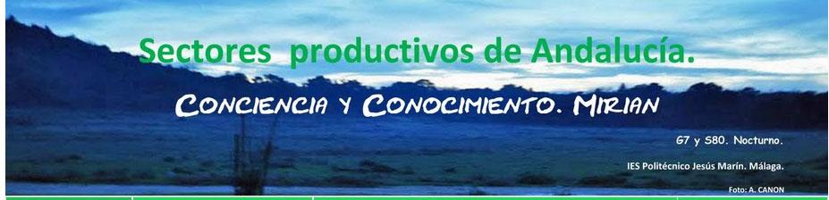 Sectores Productivos de Andalucía.