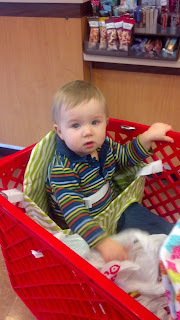 Twin Shopping Cart Buggy Bench Review