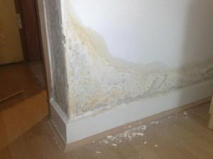 Como eliminar la humedad de las paredes como se hace aprende de todo - Como tratar la humedad en las paredes ...