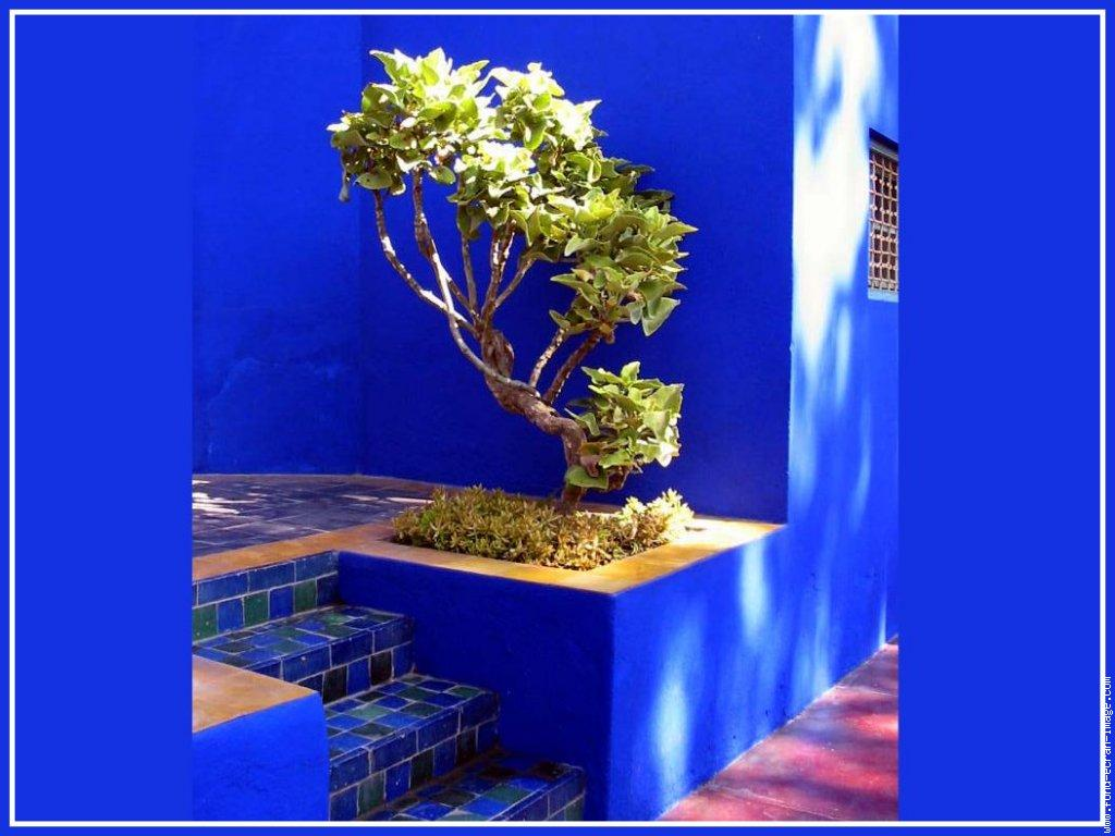 tacchi e polpette le bleu majorelle. Black Bedroom Furniture Sets. Home Design Ideas