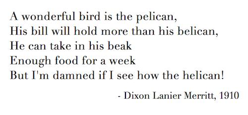 Pelican limerick