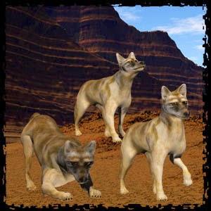http://2.bp.blogspot.com/-uMkldSC_zYw/VO6CbrJzjgI/AAAAAAAADGk/quBncv1wP2M/s1600/Mgtcs__Coyotes.jpg