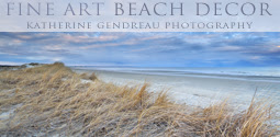 coastal art photography