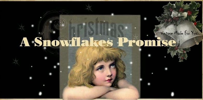 a snow flake promise