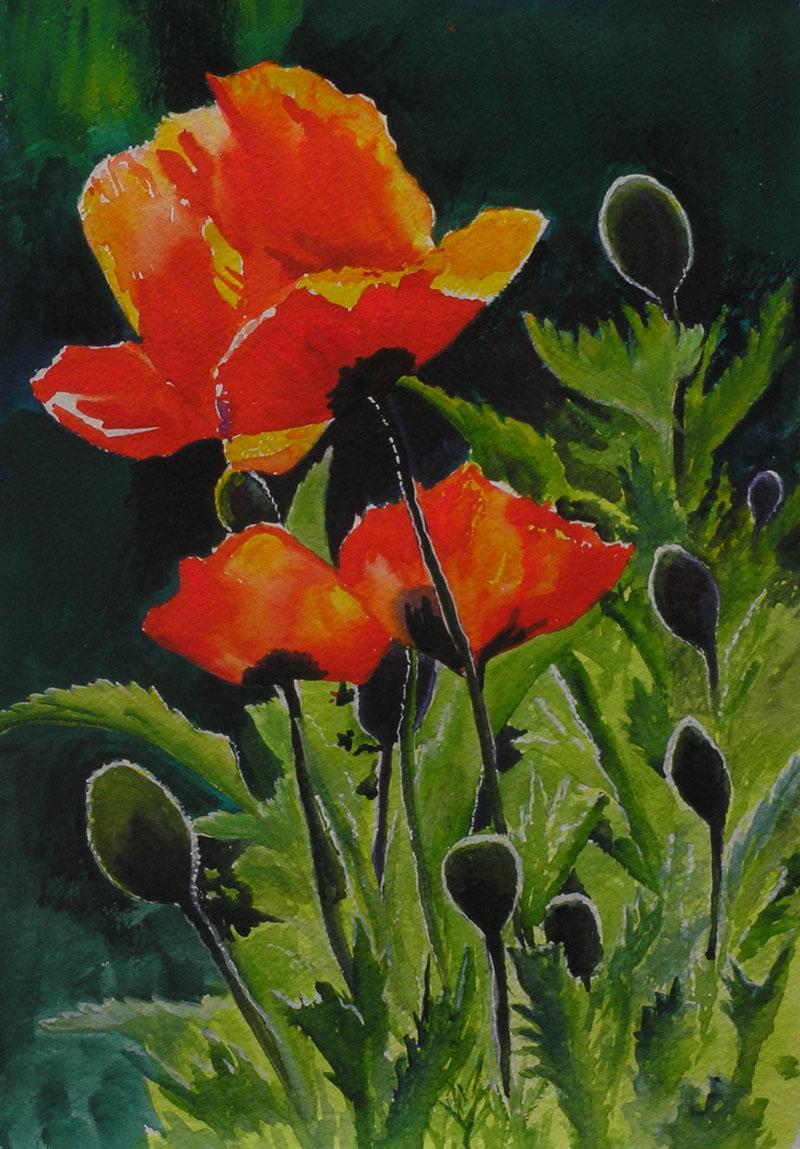 POPPIES ORIGINAL WATERCOLOR PAINTINGPoppies Watercolor Painting