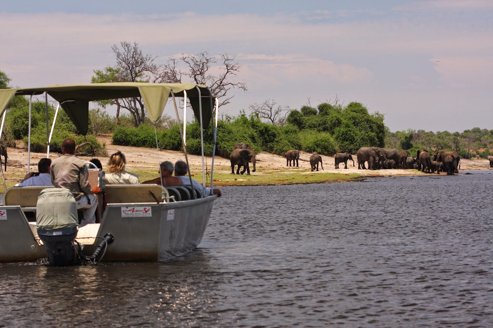 Elephant Valley Lodge Chobe, Botswana