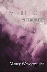 Invisible Light Book Two