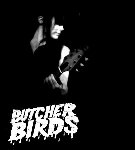 Butcher Birds