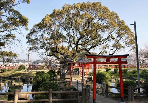 Entrance to Kashii Jingu.