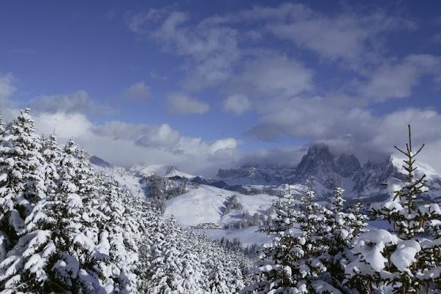 Schneebedeckte Gipfel und Bäume in den Südtiroler Dolomiten...