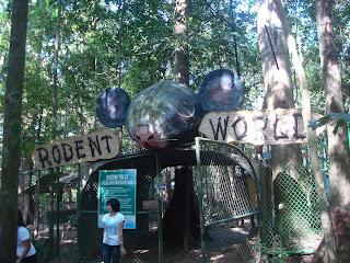 rodent world gate in Zoobic Safari