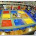 XIV TORNEO INTERNACIONAL VILLA DE AVILÉS 2014. <BR>Super Copa de España Infantil - Copa de España Cadete - Individual Junior - Equipos Alevines <br>Días 1 y 2 de noviembre.